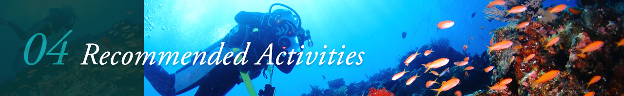 04 Recommended Activities